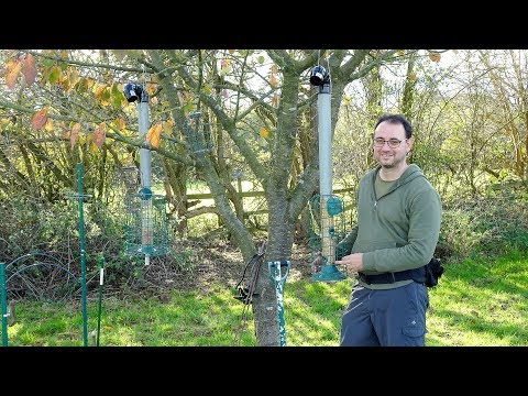 Bird Photography | Setting Up A Feeding Station: Part 1
