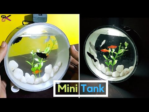 [DIY] Beautiful Mini Aquarium using PVC Pipes | Aquarium Paralon |