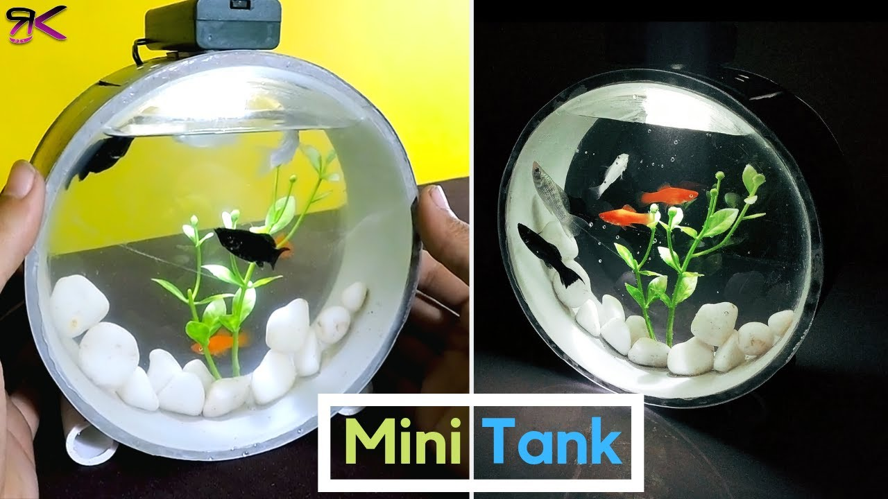 Diy Beautiful Mini Aquarium Using Pvc Pipes Aquarium Paralon Youtube