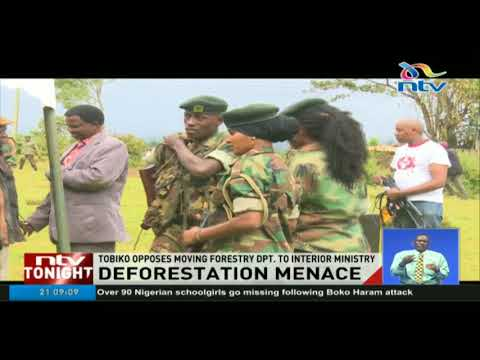 Tobiko dismisses calls to move the department of forestry to Interior Ministry