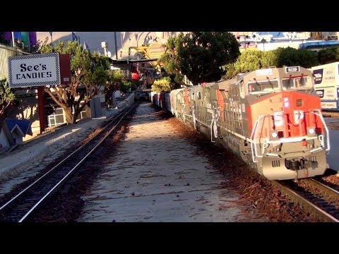 135 Car G Scale Train