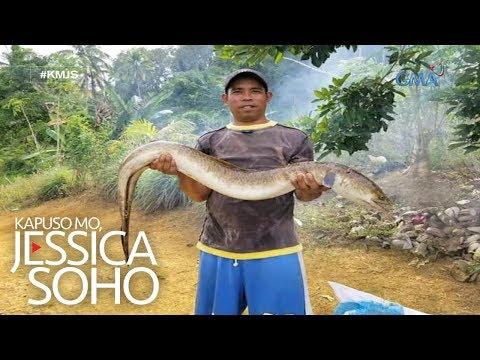 Kapuso Mo, Jessica Soho: Halimaw sa lawa ng Zamboanga?