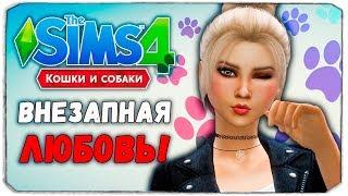 """100 ПИТОМЦЕВ - ВНЕЗАПНЫЙ ПАРЕНЬ?! - The Sims 4 """"Кошки и Собаки"""" ЧЕЛЛЕНДЖ"""