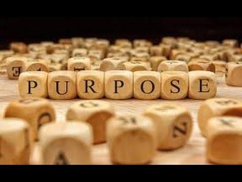 Dan Schneider Video Interview #103: On Purpose: Philosopher David L. Smith