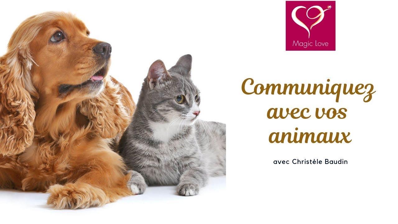 Christèle Baudin - Comment communiquer avec nos animaux ?
