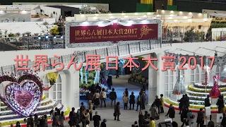 世界らん展日本大賞2017 in  東京ドーム 『Japan Grand Prix・蘭・International Orchid Festival』