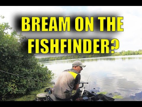 ARE THOSE BREAM ON THE FISH FINDER?