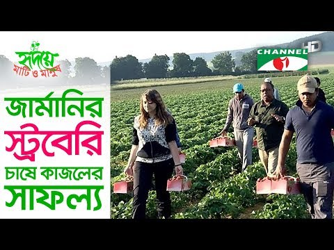 Kajol shows the way of farming strawberry in Germany