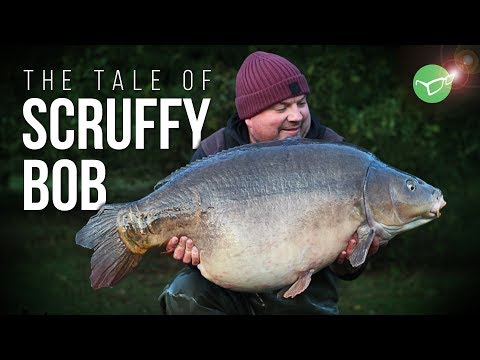 UK CARP 60lb Lake Record! The Tale Of Scruffy Bob | Carp Fishing