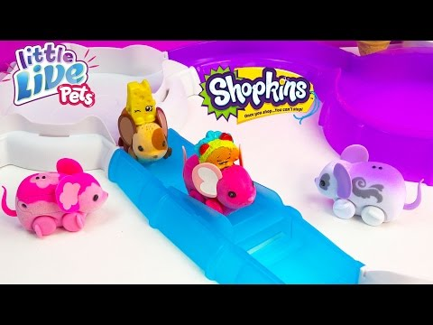 Shopkins Season 3 Taco Terrie Chee Zee Ride Little Live Pets 'Lil Mouse Track Fun Toy Review Video
