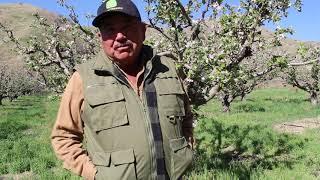 Meet Your Local Farmer: Don Fernando