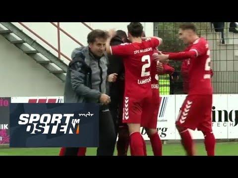 ZFC Meuselwitz bejubelt Heimsieg gegen BSG Chemie Leipzig | Sport im Osten | MDR