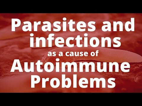 Parasites and other infections as a cause of Autoimmune Problems