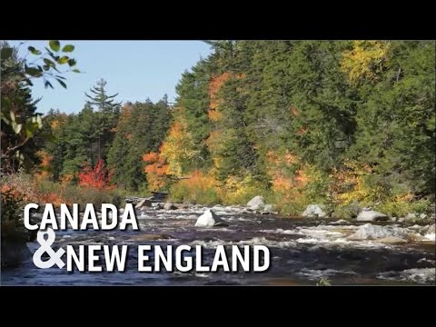 Discover Canada & New England On A Princess Cruises Vacation