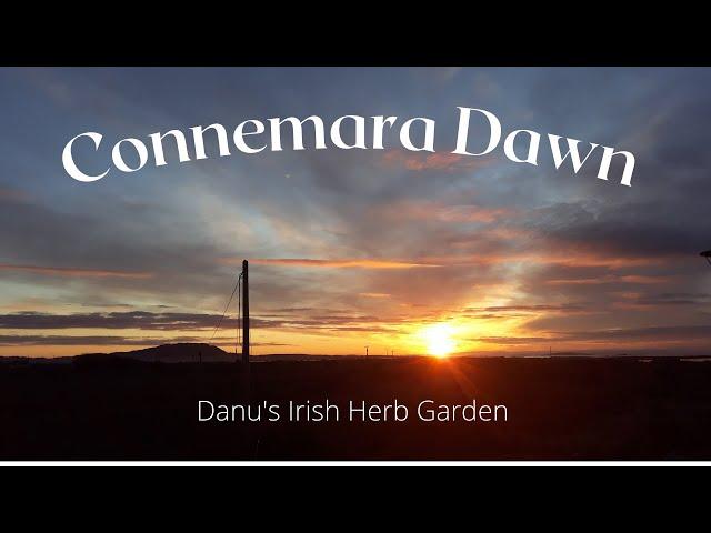 Connemara Dawn