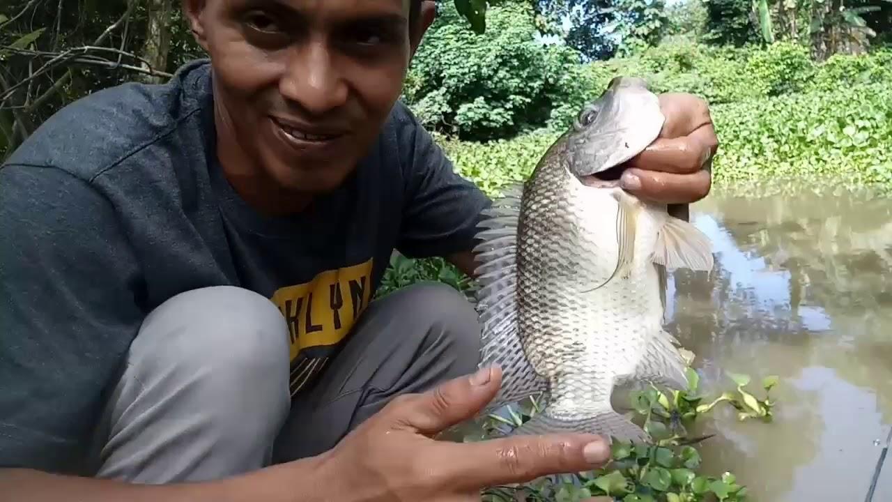 Spot Mancing Nila Jogja