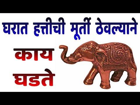 घरात हत्तीची मूर्ती ठेवल्याने काय घडते | Marathi Vastu Shastra Tips....