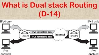 What is Dual Stack Routing (D-14)