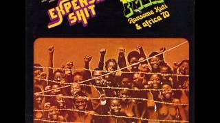 Fela Kuti - Expensive Shit (afrobeat)