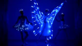 LED Butterfly Ballerinas – Ballet Dancers | Worldwide