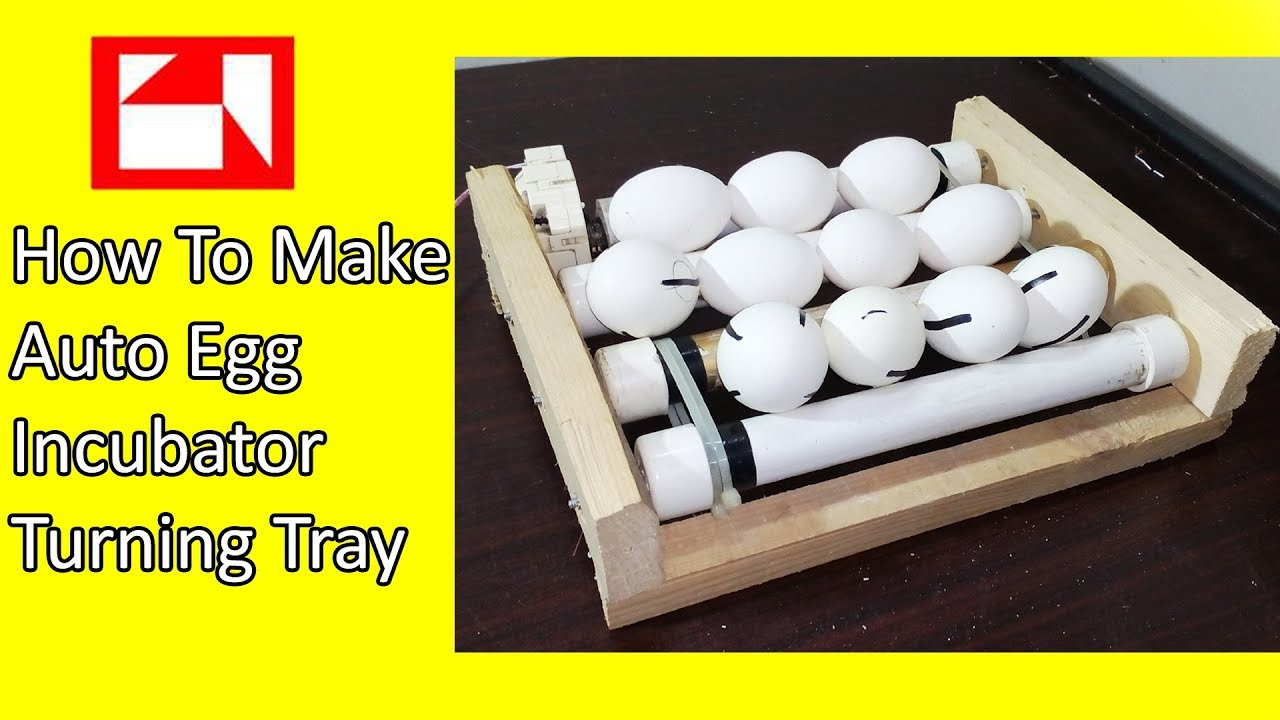 how to make egg tray