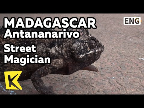 【k】madagascar-travel-antananarivo[마다가스카르-여행-안타나나리보]거리마술사-쇼/street-magician/snake-show/chameleon-show