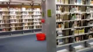 США. Огромная библиотека в Финиксе. Аризона. Поезд. Phoenix library.