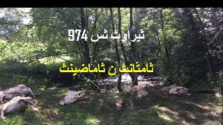 WOL 974 Moise et Aaron, la cinquième plaie; la mort du bétaille des égyptiens