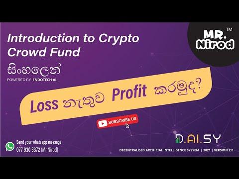 DAISY introduction to crypto crowd fund (සිංහලෙන්)