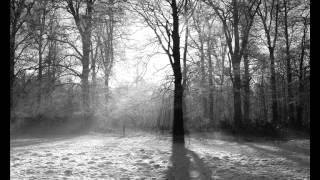 Igor Danihel - Tichá noc, svätá noc [fujara] (Christmas Carol)