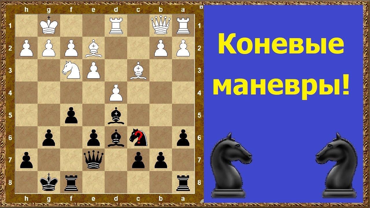 Шахматы обучение. Коневые маневры!