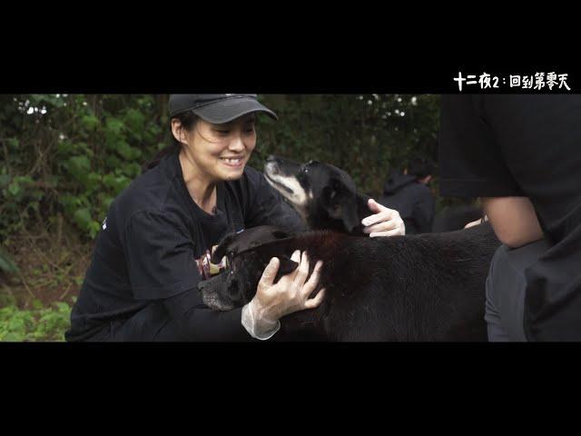 《十二夜2:回到第零天》主題曲〈大寶貝小寶貝〉MV|光良、台灣原聲童聲合唱團演唱|11/27擁抱希望