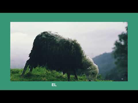 LEAD - Oh Tu Fidelidad (Lyric Video)
