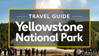 How to become better by learning Visit Yellowstone