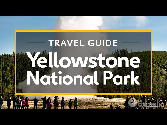 Yellowstone National Park Vacation Travel Guide   Expedia