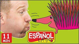 Historia de Animales + MÁS con Steve and Maggie Español | Aprende los Animales para Niños