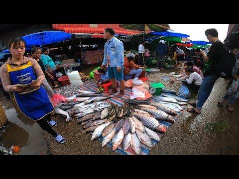 เลาะเที่ยวลาวใต้ EP15. ตลาดเช้าเมืองปากเซ ตลาดขายปลาน้ำโขงใหญ่ที่สุดในลาวใต้