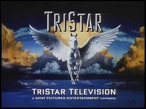 Sternin Fraser Ink Inc Highschool Sweethearts TriStar Television 1997 thumbnail