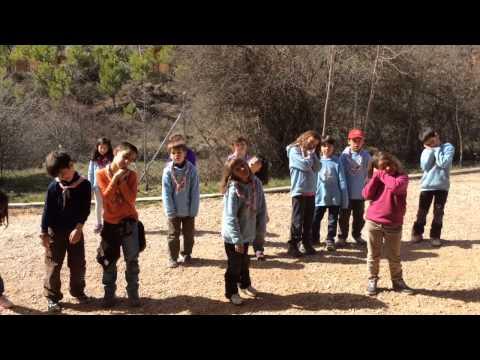 Campamento primavera- Castores G.s.itaca 651