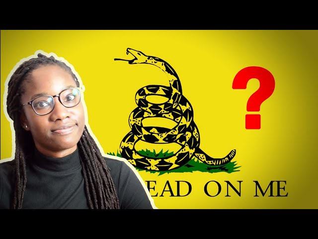Is Libertarianism Practical?