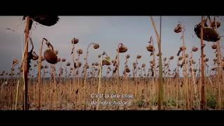 тайна семи сестер трейлер 2017# The Secret of the Seven Sisters Trailer