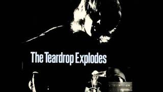 Watch Teardrop Explodes Reward video
