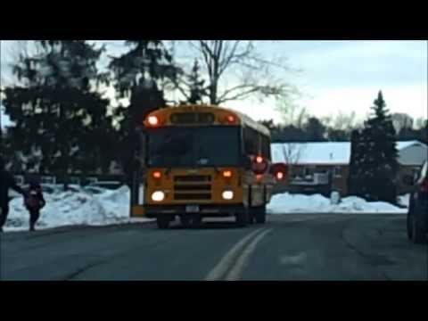 アメリカのスクールバスには注意 (School Bus in America)