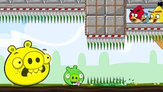 CRUSH BAD PIGGIE!! 3 ANGRY BIRDS TRAP ALL PIGGIES!