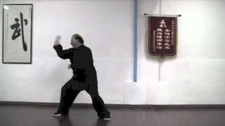 Baiyuan Tou Tao video didattico M° Falanga