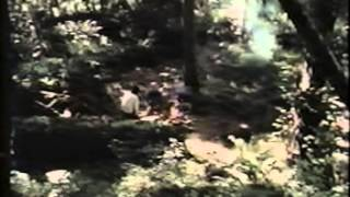 Rare movie-Original Robert W. Morgan Movie In Search of Bigfoot