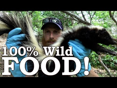 Catch and Cook STINKY Skunk & CACTUS Tuna! Ep01 | 100% WILD Food SURVIVAL Challenge!