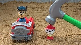 Best Learning Videos for Children - Toys Fun with Paw Patrol Chase Marshall Skye Rocky Rubble Zuma