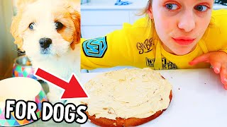 GOURMET DOG CAKE FOR PUPPY Winky