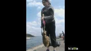 Pêche de Joëlle épisode 2 : La seiche de 18,5 cm à la route de Saint Anne